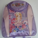 2012 New Style Shool Backpack