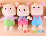 PT-31-05 18cm Yiwu Plush Toys photo